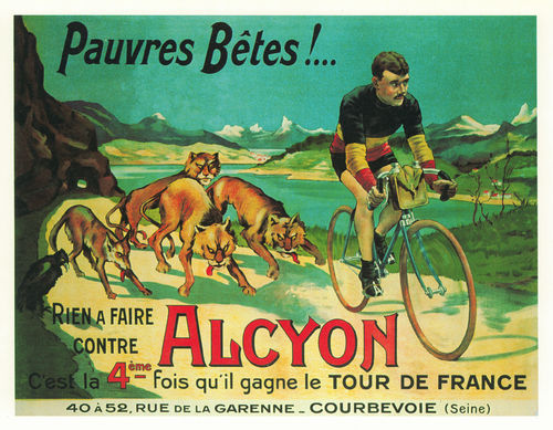 Poster Alcyon